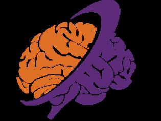 neuroBILDUNG